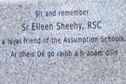 eileen sheehy memorial thum